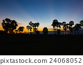 Silhouette of toddy palm at sunset twilight time 24068052