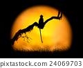 monkey, animal, silhouette 24069703
