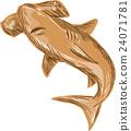 hammerhead, shark, hand-drawn 24071781