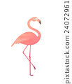 Vector illustration of a pink flamingo. 24072961