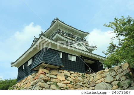 Hamamatsu Castle 24075607