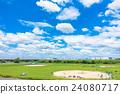 ท้องฟ้าฤดูร้อนสดและเบสบอลหญ้า 24080717