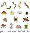 해충 24098128