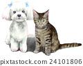고양이와 말티즈 흰색 배경 24101806