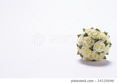 花球 24120046