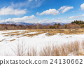 Winter landscape 24130662