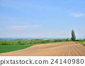hill, of, biei 24140980