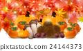 秋叶秋天食物背景 24144373