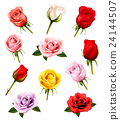 Set of different roses. Vector. 24144507
