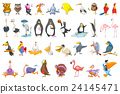 Vector set of various birds illustrations. 24145471