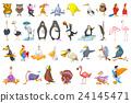 Vector set of various birds illustrations. 24145471