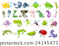 Vector set of animals illustrations. 24145473