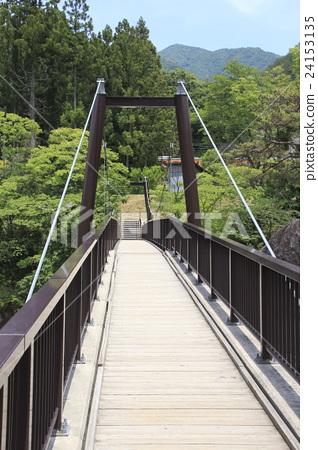 Suwa Gorge of early summer (Sasabuhashi Bridge) 24153135