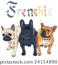 vector sketch domestic dog French Bulldog breed 24154890