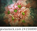 beautiful flowers,color blooming,illustration 24156890