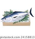 bonito, fresh fish, fish 24158813