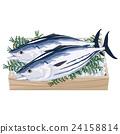 bonito, fresh fish, fish 24158814