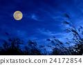 月亮 月 斑叶芒 24172854