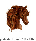 Brown arabian mare horse sketch for equine design 24173066