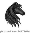 Black purebred horse stallion symbol 24174614