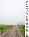 薄霧之路 24181775