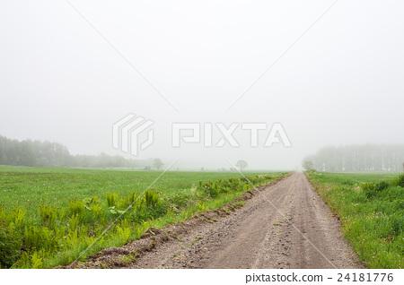 薄霧之路 24181776