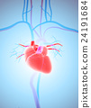 3D illustration of Heart, medical concept. 24191684