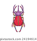 Colorful Big Horn Beetle Bug Insect 24194614