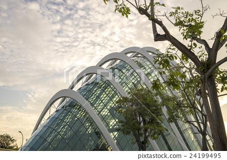 싱가포르 식물원 가든 스 바이 더 베이 24199495