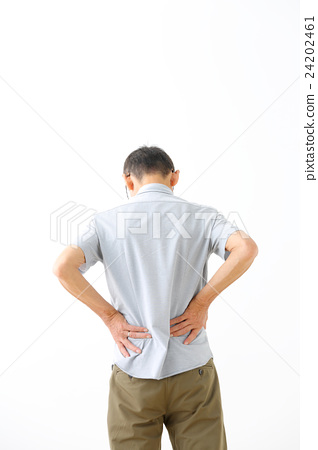 男子腰痛 24202461