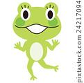 frog frogs vector 24217094