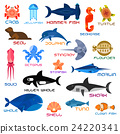 Oceanarium ocean animals and fishes with names 24220341