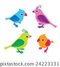 鸟儿 鸟 一组 24223131