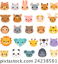 animal, animals, face 24238561