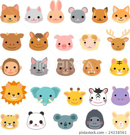 動物 臉部 臉 24238561