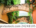 Architecture covered by green natural vines 24248105