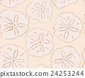 Sand dollar on yellow 24253244