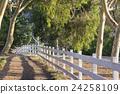 fence, walkway, path 24258109