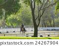 racetrack, riding ground, practice 24267904