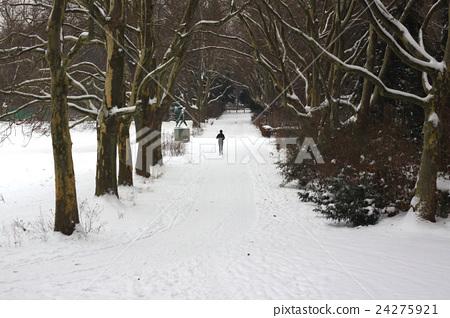 冬日的慢跑者 24275921