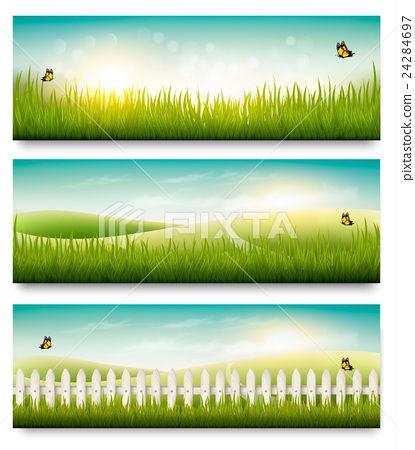 Nature summer banners with green grass and  sky 24284697