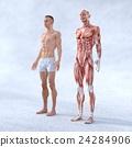 肌肉發達 男人们 男子 24284906