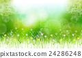 flower, flowers, glowing 24286248