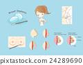cartoon woman doing breast implant 24289690
