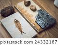 化石 鸚鵡螺化石 魚 24332167