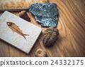 化石 魚 收藏 24332175