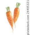 胡萝卜 胡萝卜或欧芹 蔬菜 24405321