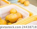 ลูกแพร์,ผลไม้,อาหาร 24438718