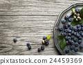 Blueberry 24459369