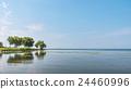 lake biwa, summer, lake 24460996